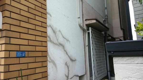 Photo_18-11-26-13-32-21.054